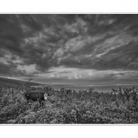 Dsc2261 2 by Landscapelover in Regular Member Gallery