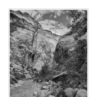 Dsc2614 2 by Landscapelover