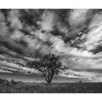 Dsc3143 Crop by Landscapelover in Regular Member Gallery