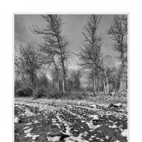 Dsc4361 by Landscapelover