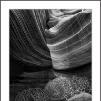 Dsc6998 by Landscapelover