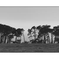 A0006586 Copy by Landscapelover
