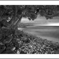 A6539368 Final by Landscapelover