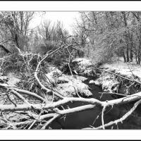 A 0223 Prv by Landscapelover