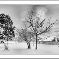 A 0272 Prv by Landscapelover