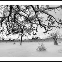 A 0274 Prv by Landscapelover