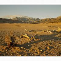 Cf000148 by Landscapelover