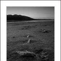 Cf000189 by Landscapelover