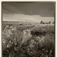 Cf001352 by Landscapelover