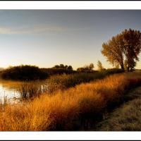 Cf001414  2  Crop by Landscapelover in Regular Member Gallery