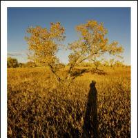 Cf001441  2 by Landscapelover