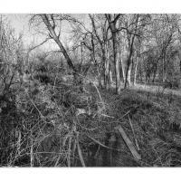 Cf001667 by Landscapelover in Regular Member Gallery