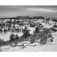 Cf004856 2 Level by Landscapelover in Regular Member Gallery