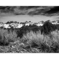 Cf007619 Bw by Landscapelover