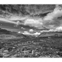 Cf009983 by Landscapelover