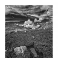 Cf010003 by Landscapelover in Regular Member Gallery