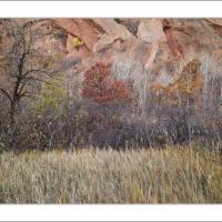 Cf010683 by Landscapelover in Regular Member Gallery