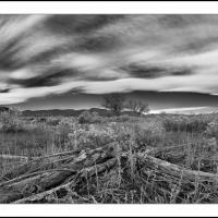 Cf011307 by Landscapelover