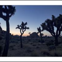 Cf012240 by Landscapelover