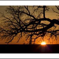 Cf014410 Crop by Landscapelover
