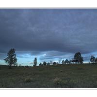 Cf016687 by Landscapelover
