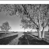 Cf016976 by Landscapelover in Regular Member Gallery