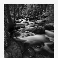 Dsc 9873 by Landscapelover