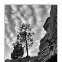 L1000152 Crop 1 by Landscapelover in Regular Member Gallery