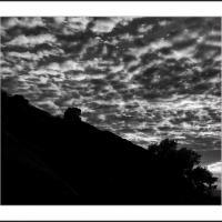 L1000195 Crop 1 by Landscapelover