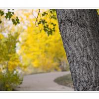 L1000800 by Landscapelover