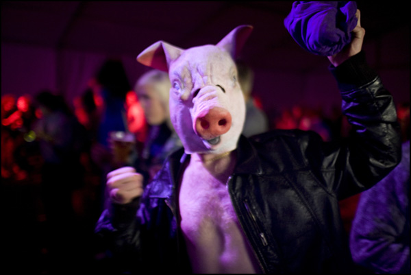 Pig by Erik Five in Regular Member Gallery