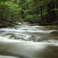 Waterfall West Virginia by Paul66