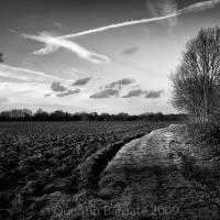 Winter Field by Quentin_Bargate