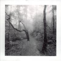 Pt Print01 by JimCollum in Jim Collum
