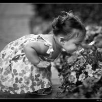 Smelling Flowers by Mike Hatam in Mike Hatam