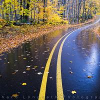 Autumn Road by WildRover in Regular Member Gallery