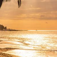 Paradise Island, Nassau, The Bahamas Scenes by monk in Regular Member Gallery
