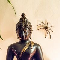 All Beings Have The Buddha-nature by monk in Regular Member Gallery
