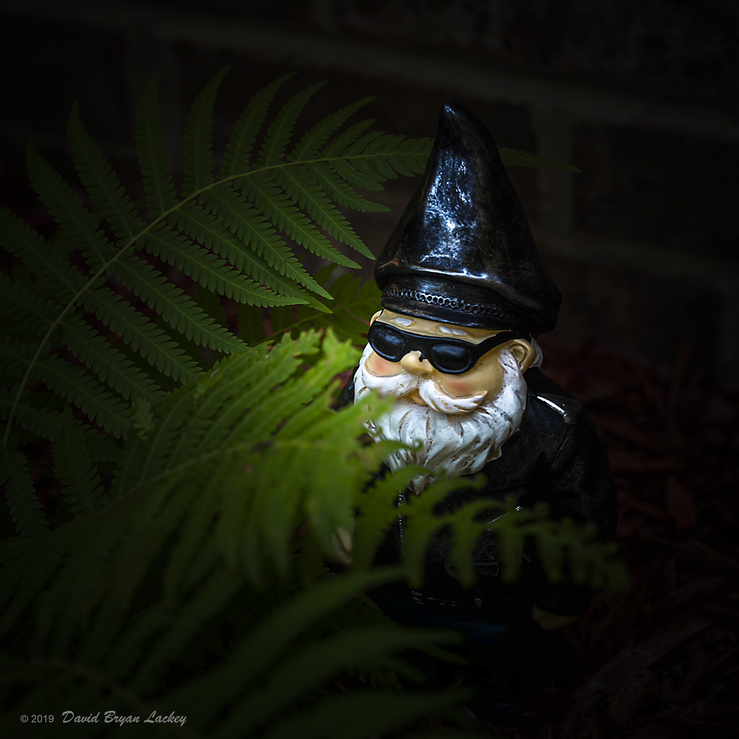 Biker Gnome in the Garden by dave.gt in dave.gt