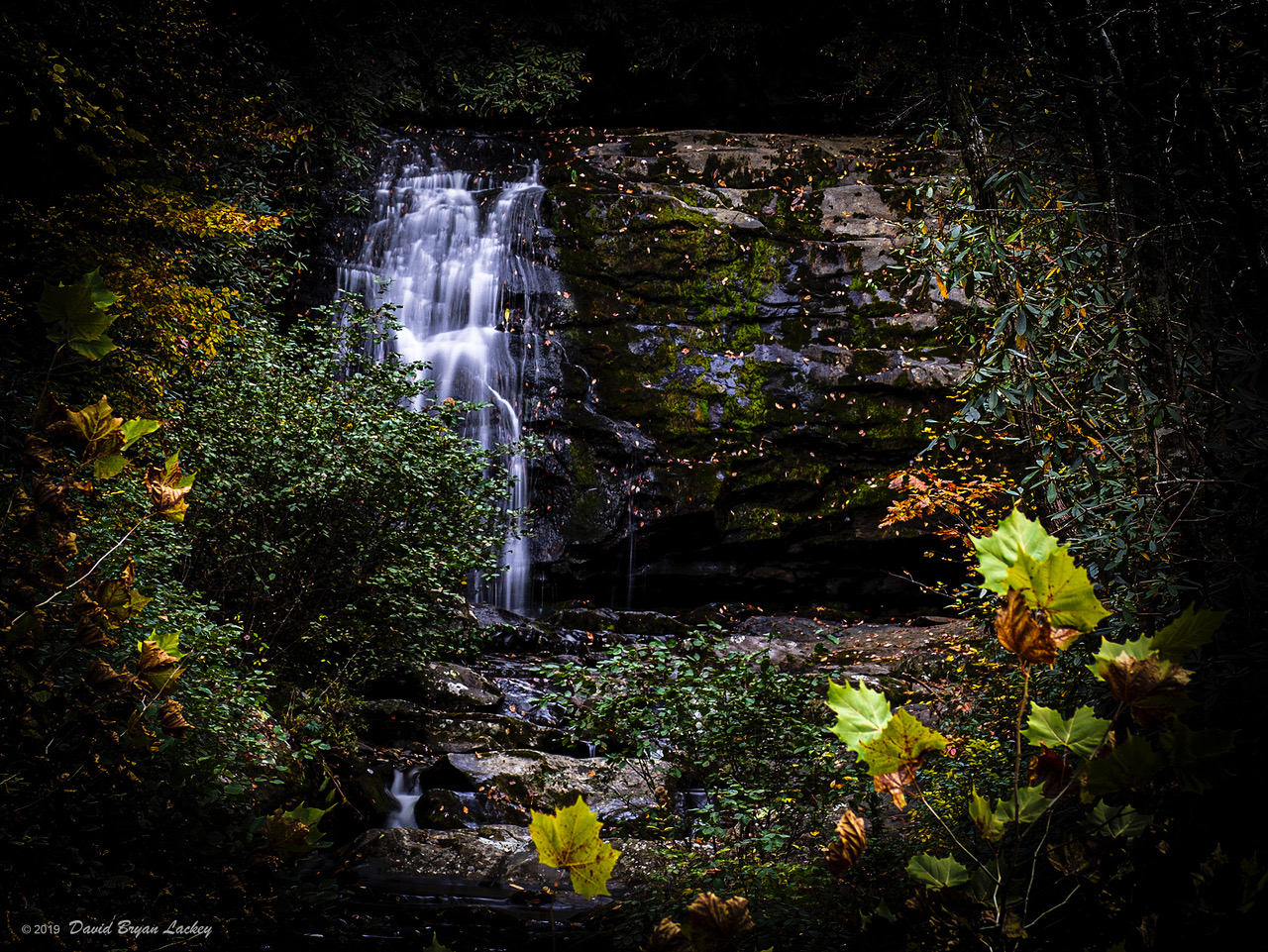 Waterfall in the Forest by dave.gt in dave.gt