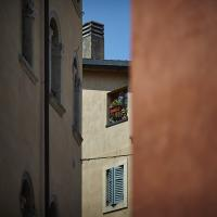 Verona by Thorkil