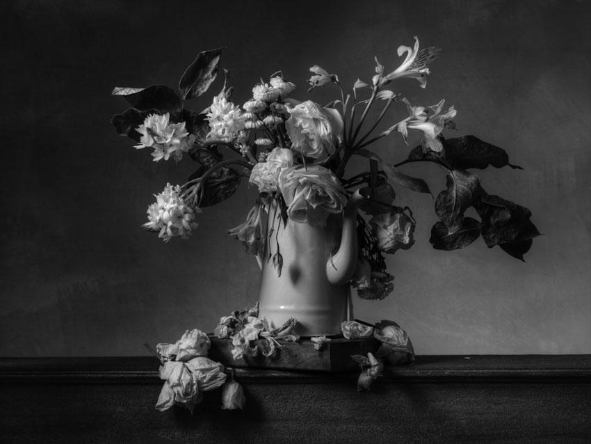 White Flowers by downstairs in Regular Member Gallery