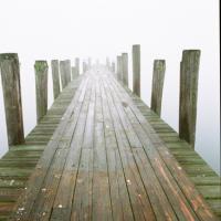 Foggy Morning by Raid in Regular Member Gallery