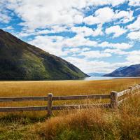 New Zealand Fence Field Sky by alajuela