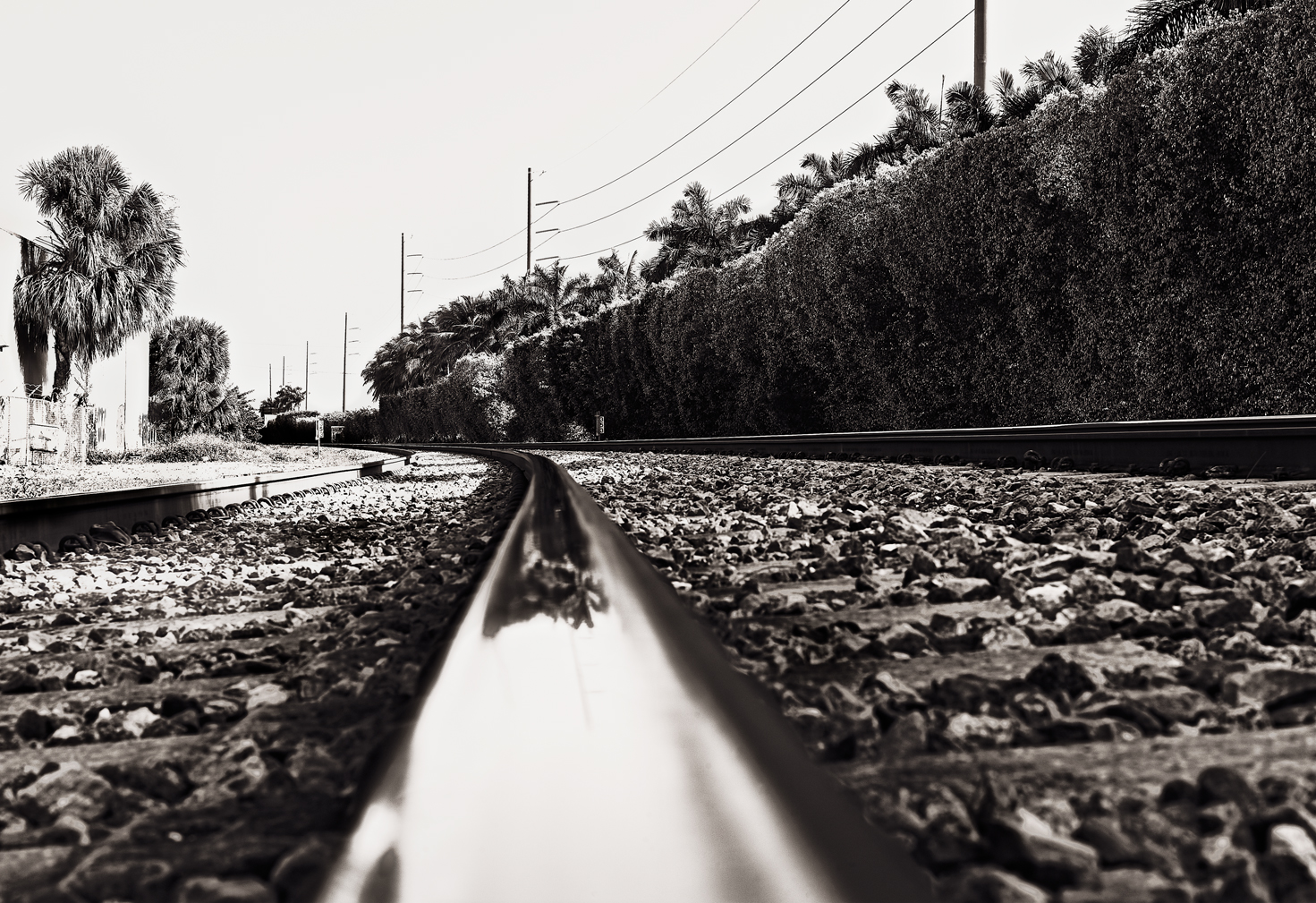 Curve Track