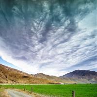 New Zealand Sky Field