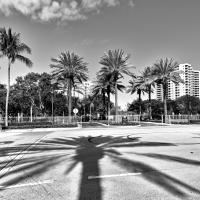 Miami by alajuela