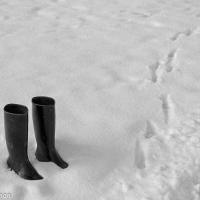 Winter Impression by wosim in Regular Member Gallery