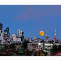 tokyo super moon copy by awolf