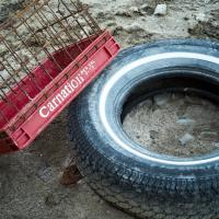 Whitewall Tire and Red Carnation by MikeScecina in MikeScecina